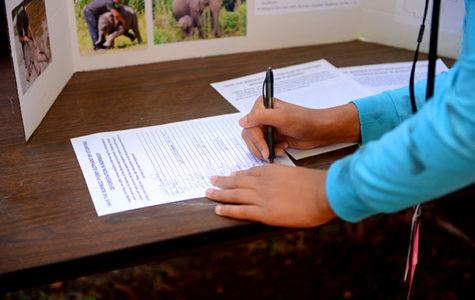 Raising Awareness for Endangered Species